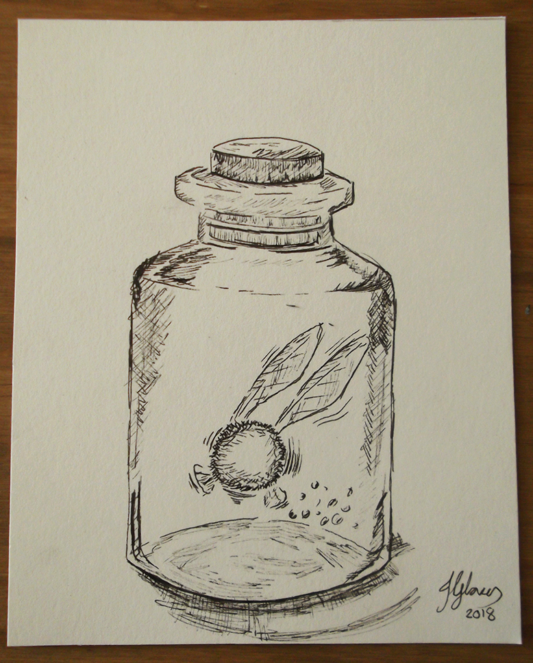 Fairy Jar - linktober inktober ink drawing illustration legend of zelda ocarina of time art fantasy jglover