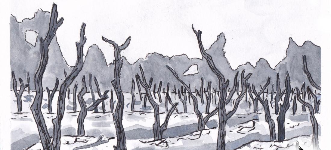 Corvus - Art - Illustration - Graphic Novel - Web Comic - Fantasy - Story - Landscape - History - Horror
