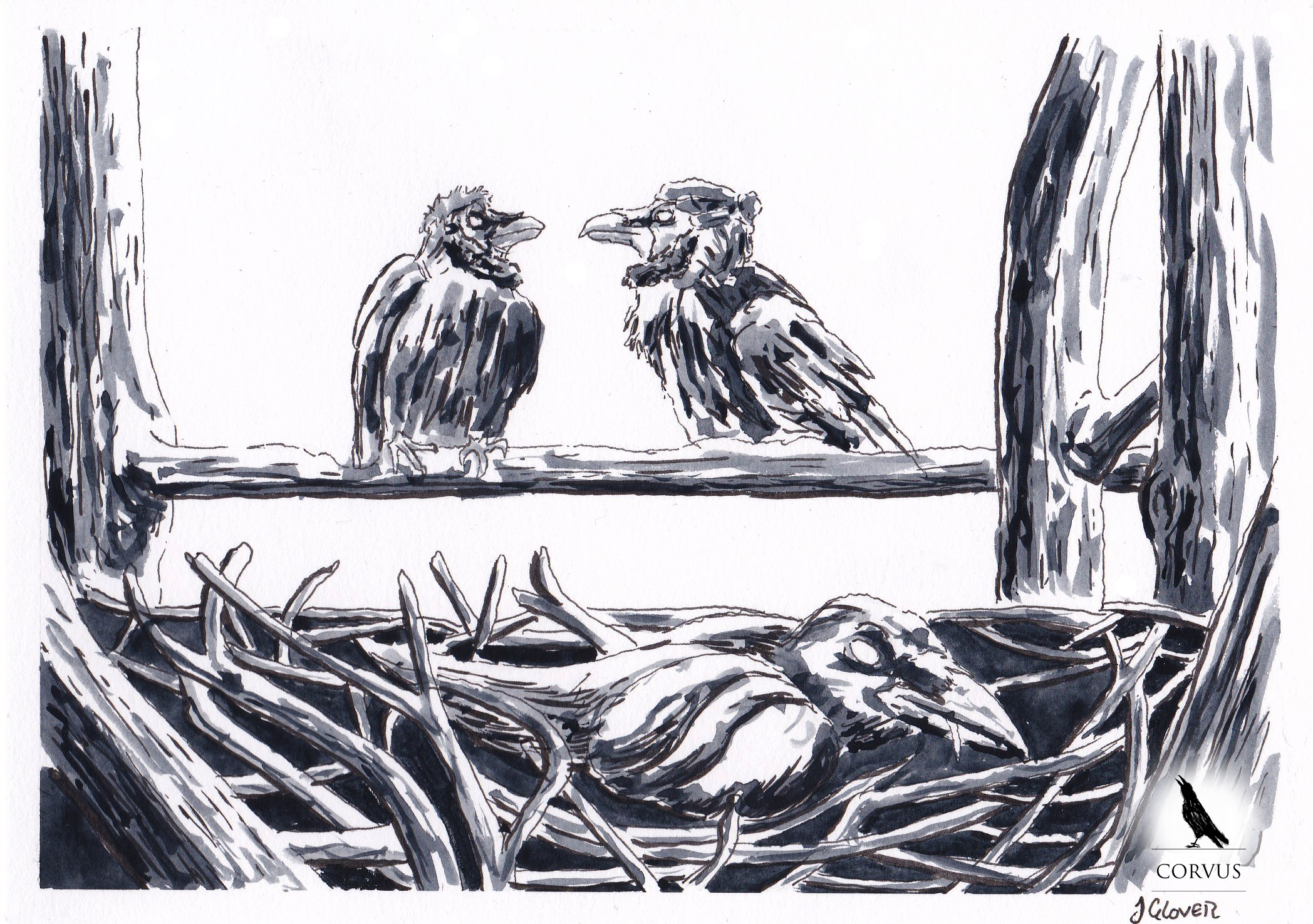 corvus - fantasy - graphic novel - art - illustration - story - crows - raven - ravens - webcomic