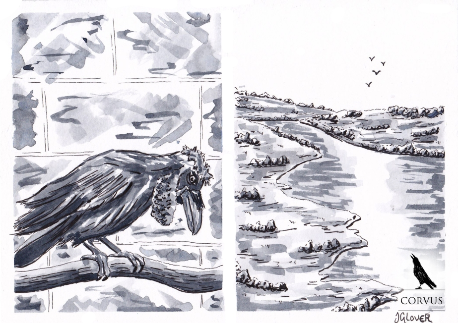 Corvus - graphic novel - web comic - illustration - art - ink - drawing - inktober - ravens - crows