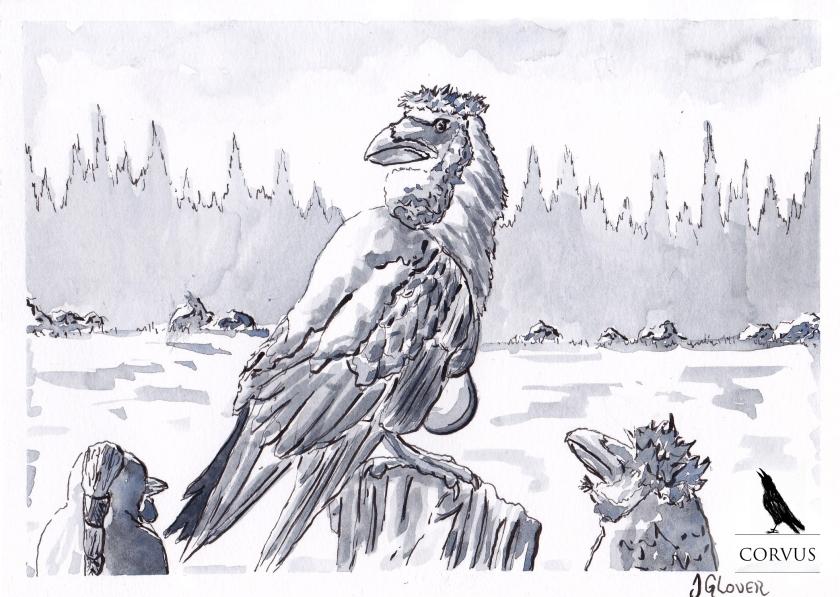 Corvus - Graphic Novel - Art - Illustration - Drawing - Fantasy - Folklore