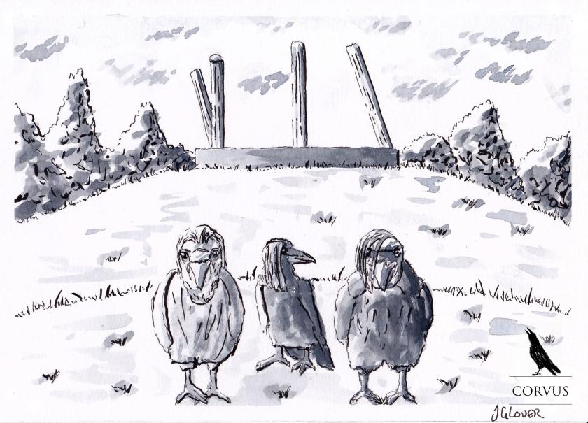 Corvus - Graphic Novel - Art - Illustration - Drawing - Folklore - Story - Artwork - Ravens