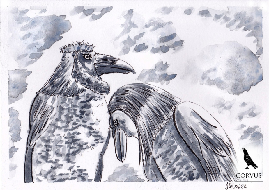 Corvus - Graphic Novel - Art - Illustration - Folklore - Fiction - Story - Fantasy - Drawing