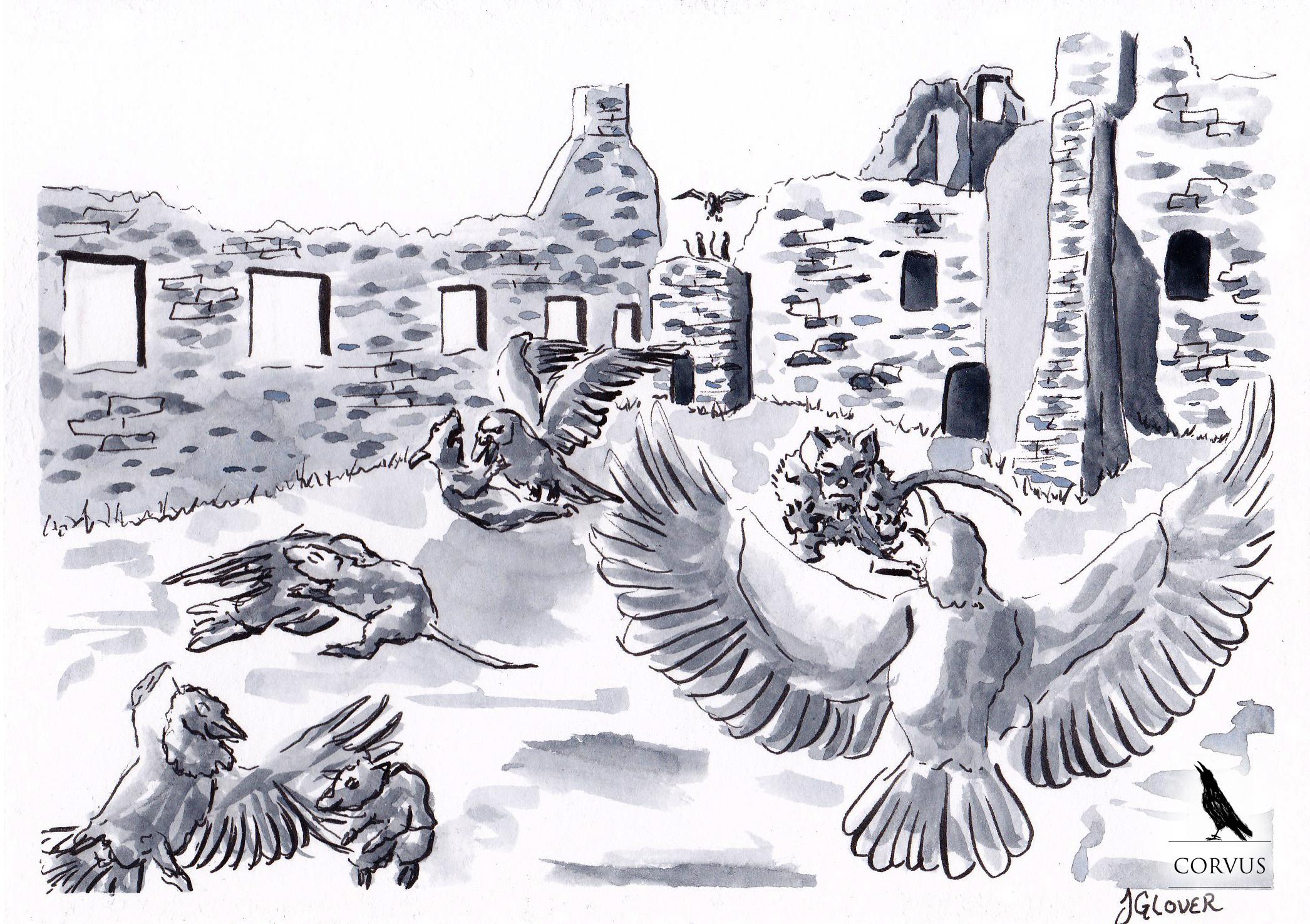 corvus graphic novel ink drawing art illustration graphic novel folk lore history