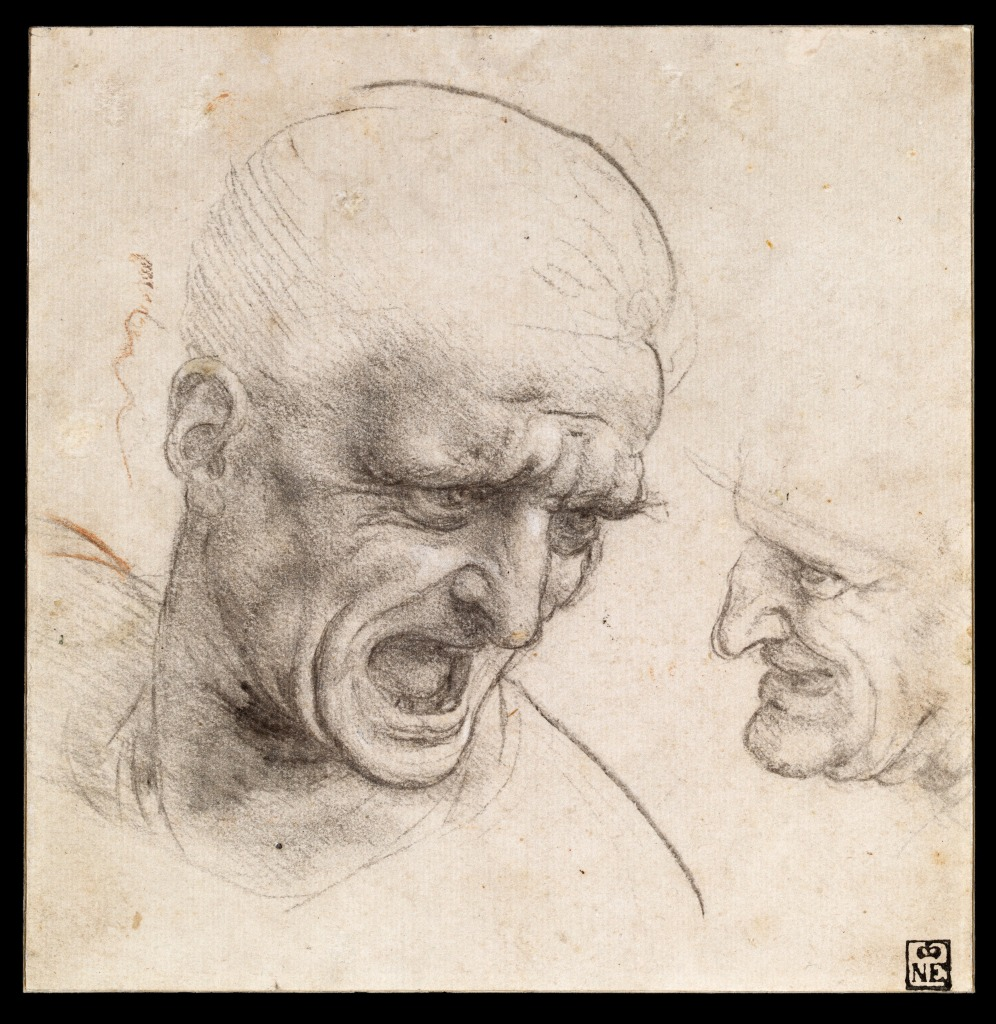 leonardo da vinci - renaissance - drawing - old master - study - fine art - charcoal - drawing - male - portrait