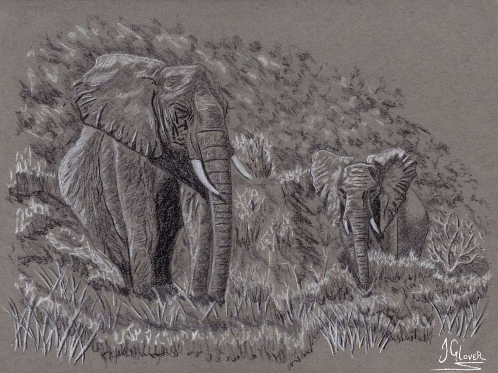 Charcoal drawing of african elephants in savannah landscape nat geo